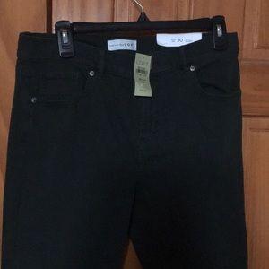 NWT loft dark green jeans